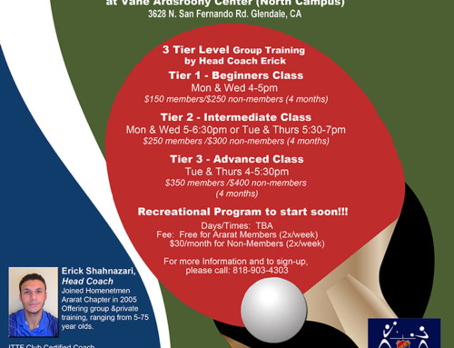 Table Tennis Program