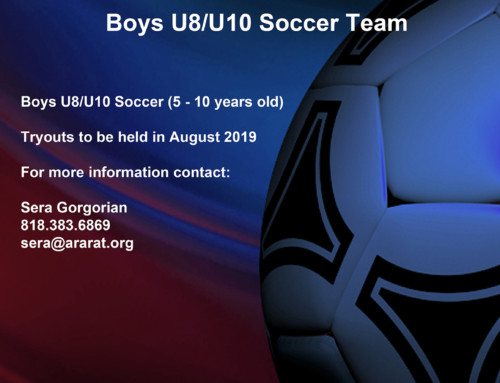 Boys U8/U10 Soccer Team